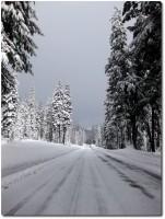 Schneebedeckte Strasse in Oregon