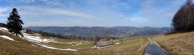 Panorama Schwengimatt