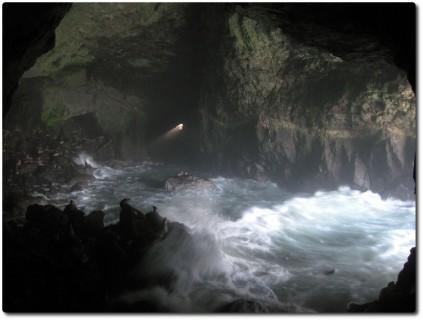 Seelöwenhöhle