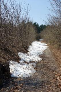 Aufstieg zum Settepani - zu viel Schnee