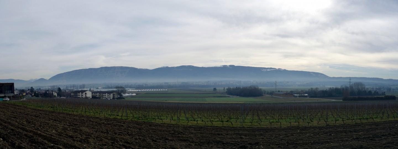 Panorama Salève bei Sézenove