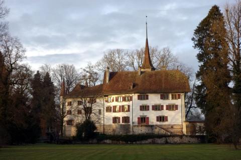 Schloss Landshut im Abendlicht
