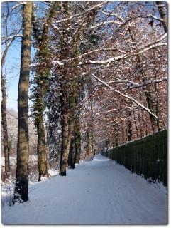 Wintertrails entlang der Emme