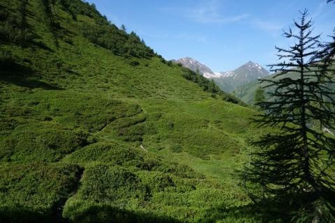 Ausblick auf das Trailmonster bei Stabbiascio