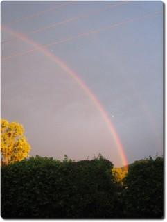 Regenbogen Camping Belchenblick