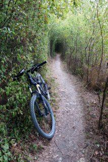Trailtunnel über der Rhone