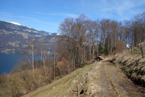 Trails runter nach Interlaken