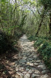 Steinige Trails beim PIan Marino