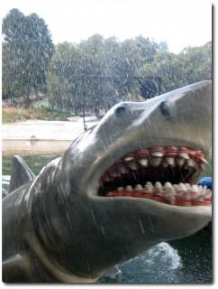 Universal Studio Tour - Der weisse Hai