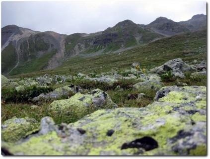 Alpines Gelände entlang der Wege