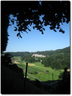 Blick auf die Strafanstalt Thorberg
