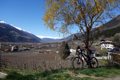 Blick ins Vinschgau bei Tiss