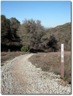 Trail Nr 50 - Himmlisch...