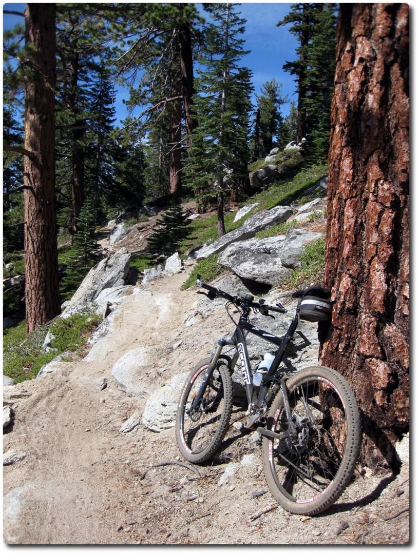 Tahoe Rim Trail - Spass pur !
