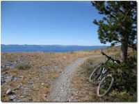 Tahoe Rim Trail - Hat ein wenig vom Chasseral