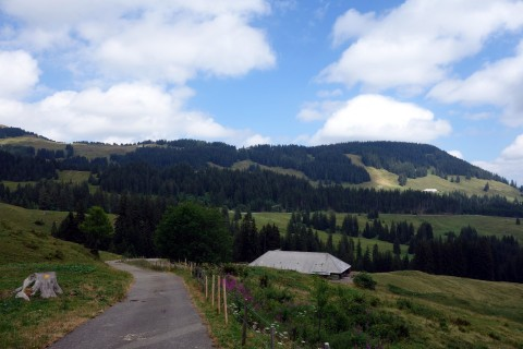 Aufstieg zum Berghaus Gurnigel - bei Tschingel