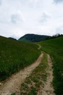 Feldweg nach Ulmet
