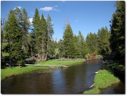 Upper Geysr Basin - Natur