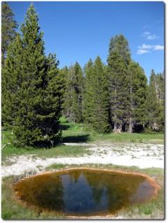 Upper Geysr Basin - Another Pool