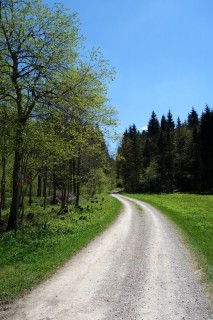 Von Vallorbe nach Le Pont
