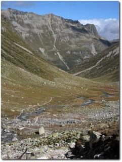 Ab dem Pass geht es nur noch runter auf einem tollen Trail