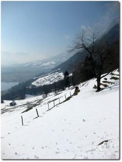Blick in Richtung Alpnach und möglichem Höhenweg