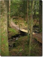 Trail runter nach Kemmeribodenbad