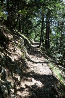 Trail durch den Wagnerbann
