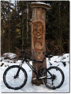 Holzmannli im Bireggwald