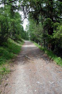 Schotterwege zur Ochsenalp