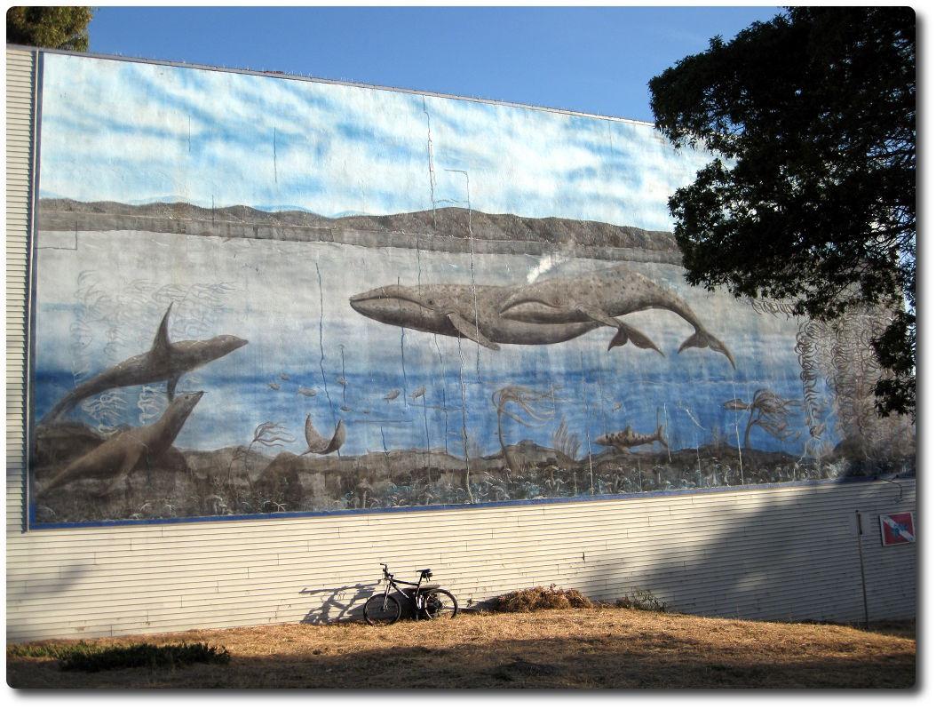 Wandbild Cannery Road - Monterey