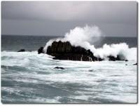 Wellen ganz nah !