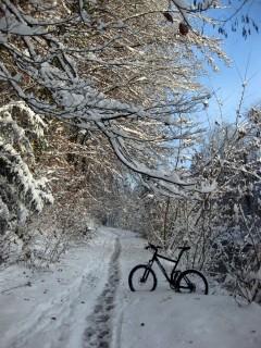 Winterstimmung entlang der Emme
