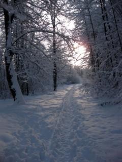 Winterstimmung am Sonntagmorgen