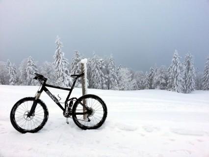 Winter beim Hinteren Weissenstein