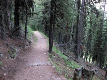 Superttrail runter vom Weisshorn