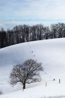 Winterblick und Alpen