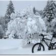 Winterbike auf der Krienseregg