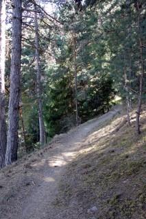 Trails ob Morter