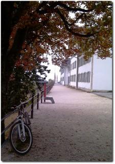 Herbstnebel auf dem Weissenstein