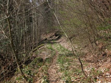 Weg vom Utzigenwull nach Lindental