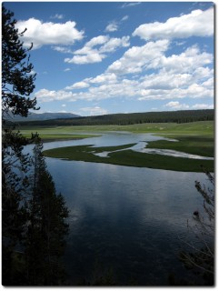 Landschaft - Yellowstone National Park