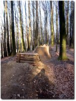 Bikepark 01