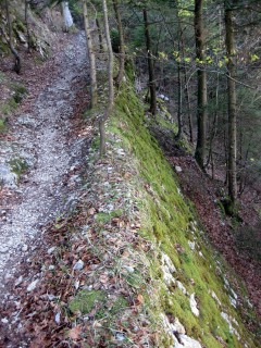 Zugang zum Stigelos vom Nesselboden - Stützmauer