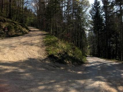 Aufstieg Gänsbrunnen - Backi
