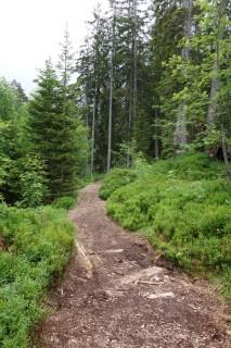 Trail zur Rossweid